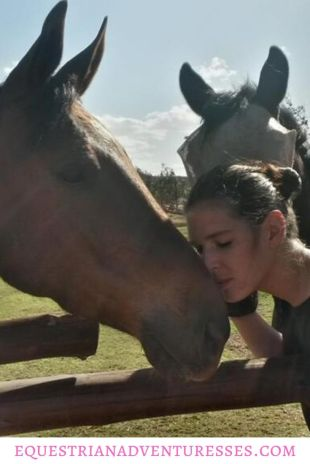 Pinterest Pin for article: The Equine Behavioral Science Institute - Understanding Horses and Making a Difference