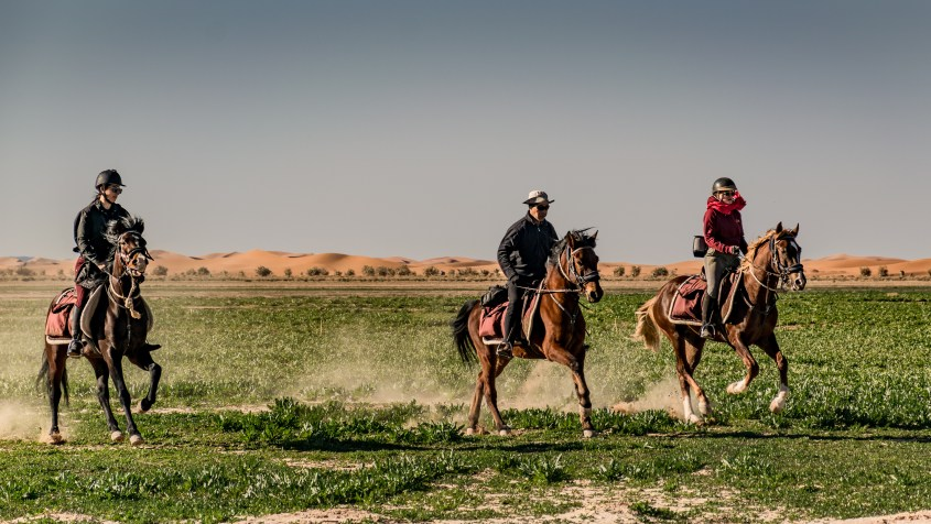 Three riders are cantering through a field of rocket during a horse riding tour in Morocco