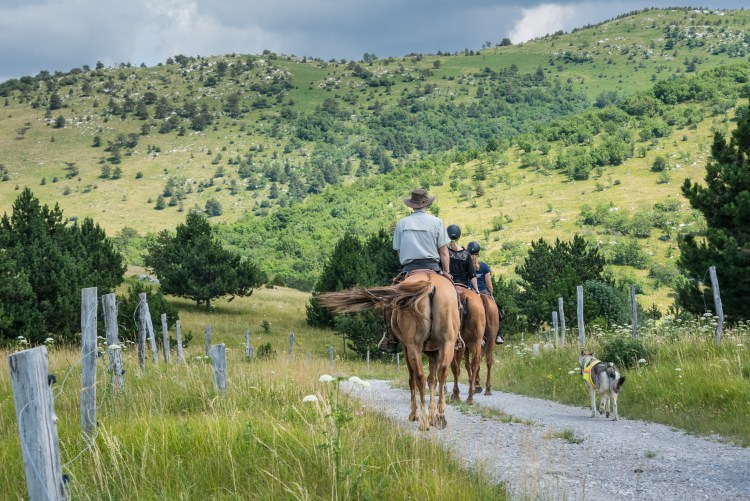 Riders on a horse riding tour in Slovenia