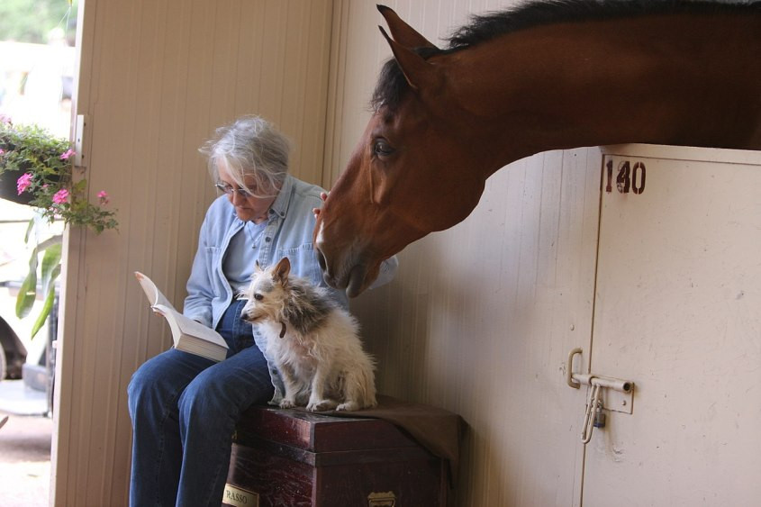 A lady reading on of the inspirational adventure books while sitting with her dog and petting a horses nose.