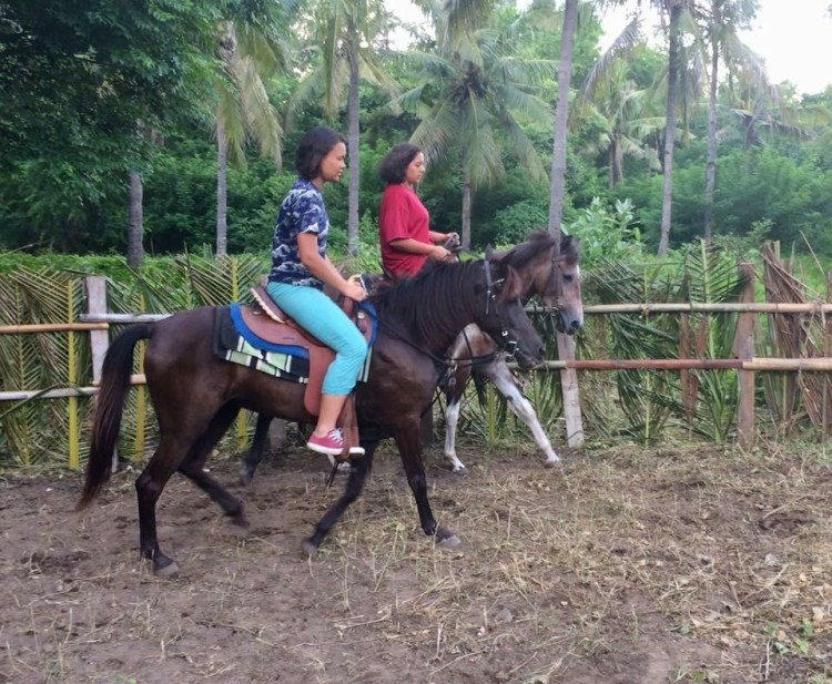Horse riding in Gili Trawangan in a new paddock in a horse rescue