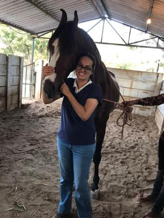 Working with Marwari horses is one of the special treats of being an equine dentist in India