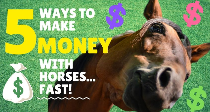 How to Make Money with Horses? 5 Side Hustles You Can Do NOW to Make Side Money Online with Horses