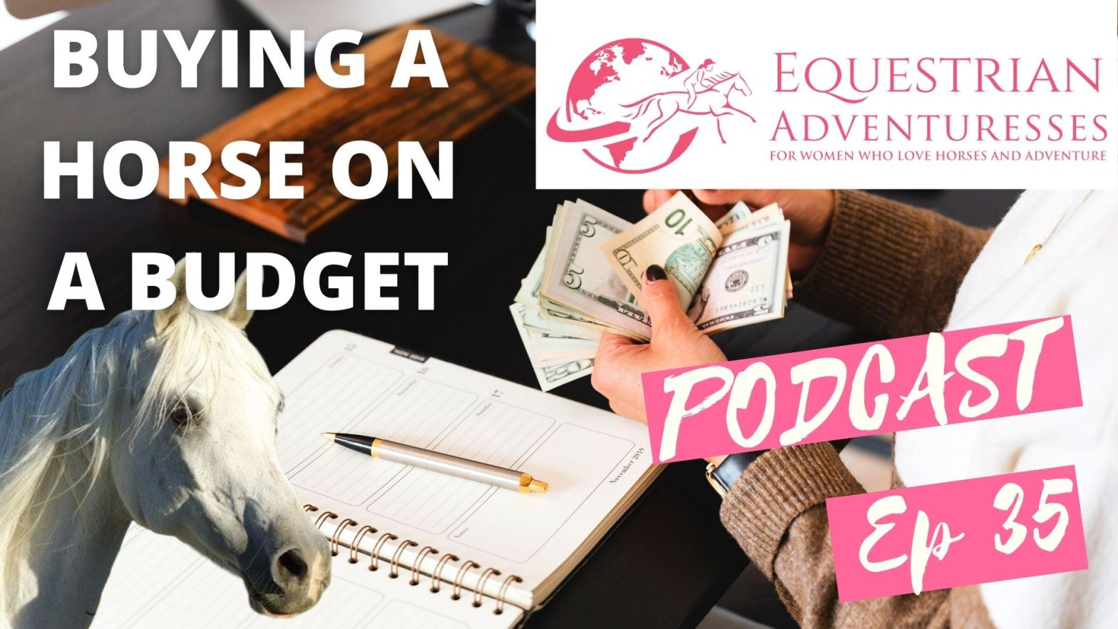 Equestrian Adventuresses Travel and Horse Podcast Ep 35 - Buying a horse on a budget: Tips to saving money when buying a horse