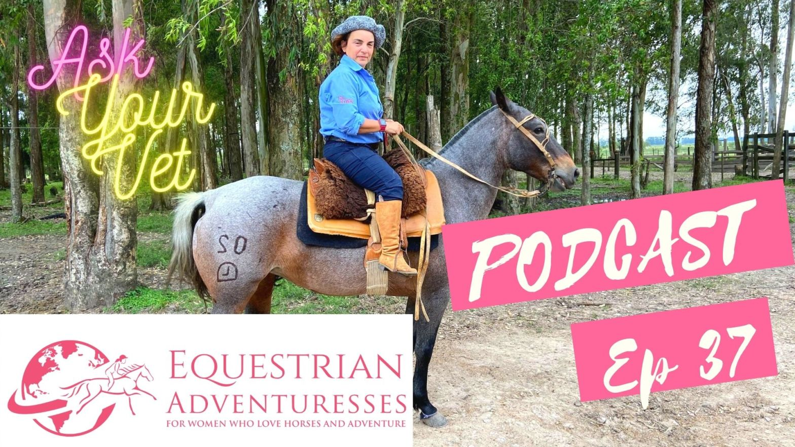 Equestrian Adventuresses Travel and Horse Podcast Ep 37 - Ask your Vet - Introducing Adriana, horse vet from Brazil