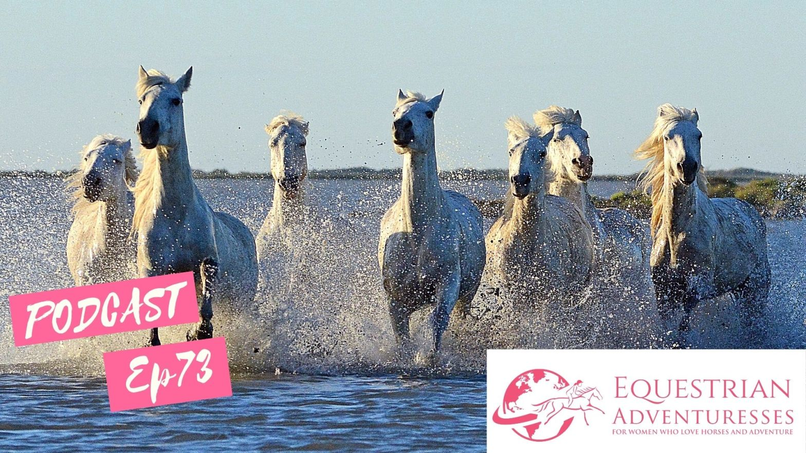 Equestrian Adventuresses Travel and Horse Podcast Ep 74 - Finding a New Home in the Camargue