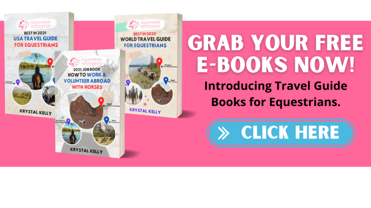 These three travel guides are the perfect horse book for adults. Packed with information for equestrian travel in the USA, worldwide and with tips for adventuresses seeking working or volunteering opportunities