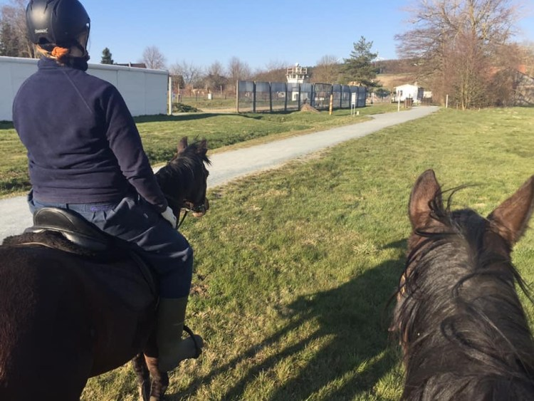 We are going horse riding in Germany along the Iron Curtain and see a variety of border fortifications which were used along the 1393km long borderline