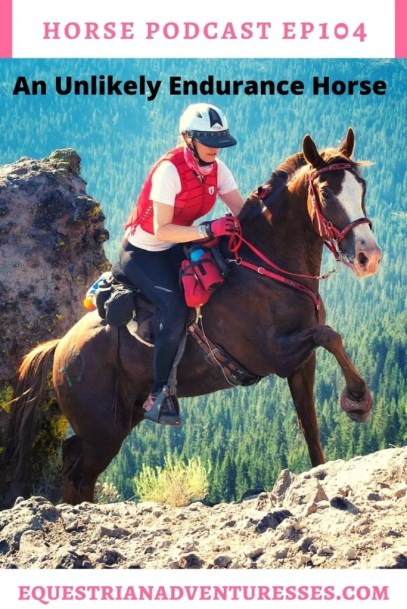 Horse and travel podcast pin - Ep 104 An Unlikely Endurance Horse
