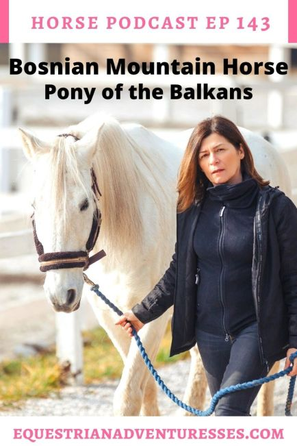 Horse and travel podcast pin - Ep 143 Bosnian Mountain Horse - Pony of the Balkans