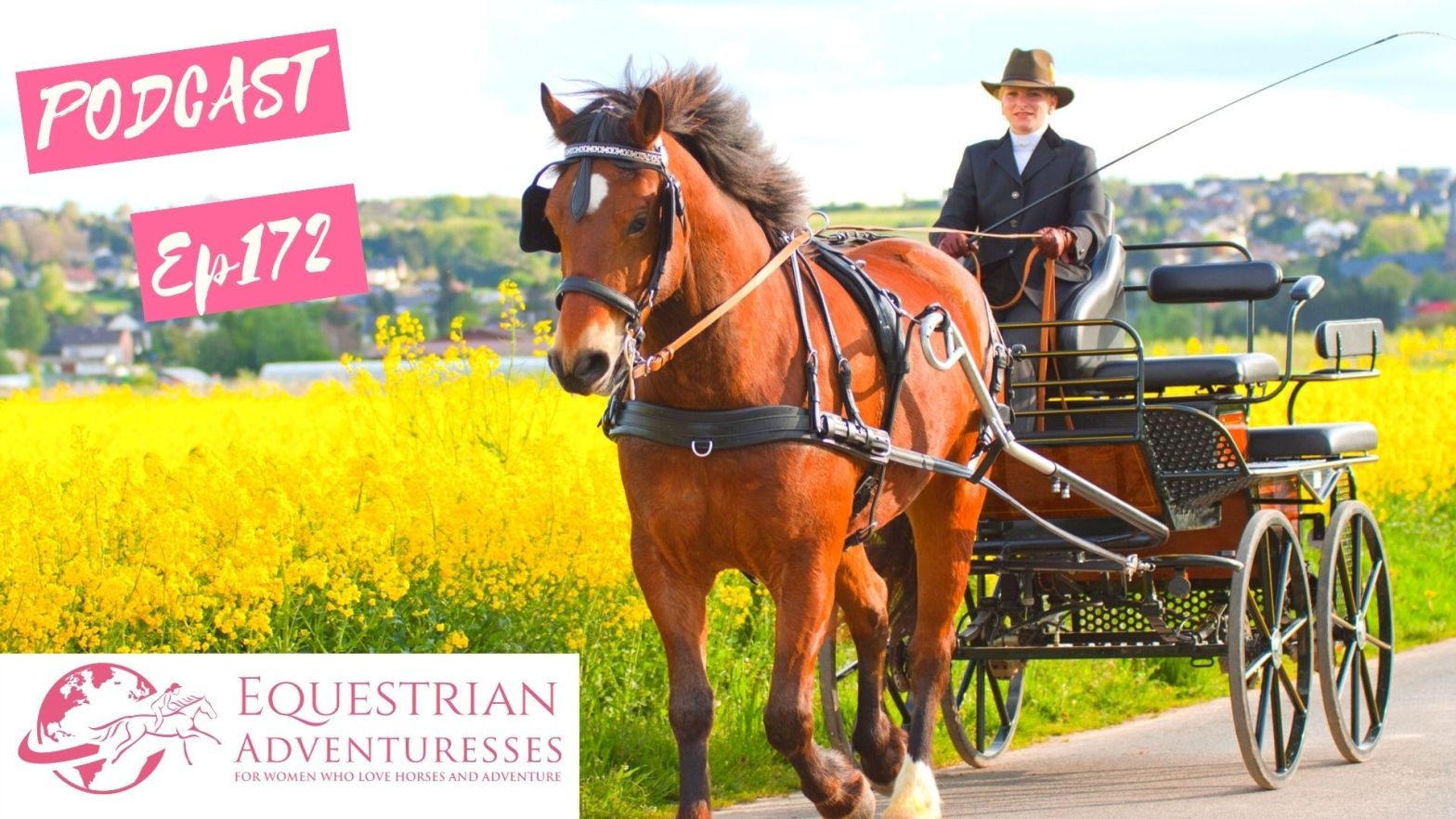 Equestrian Adventuresses Travel and Horse Podcast Ep 172 - Exchanging my Saddle for a Harness