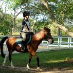 The Master List Of Horseback Riding Gear And Apparel