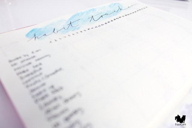 Bullet Journal Setup 2018 Habit Tracker