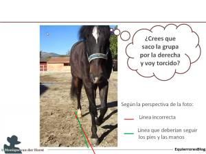 IM_Rectitud_caballo