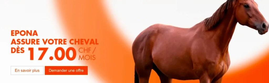 Epona Horse Insurance Switzerland