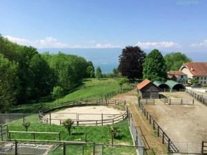Equestrian Property, 1473 Châtillon, Switzerland