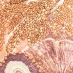 Wonderland Collective Oceanum Silk Twilly Scarf Coral