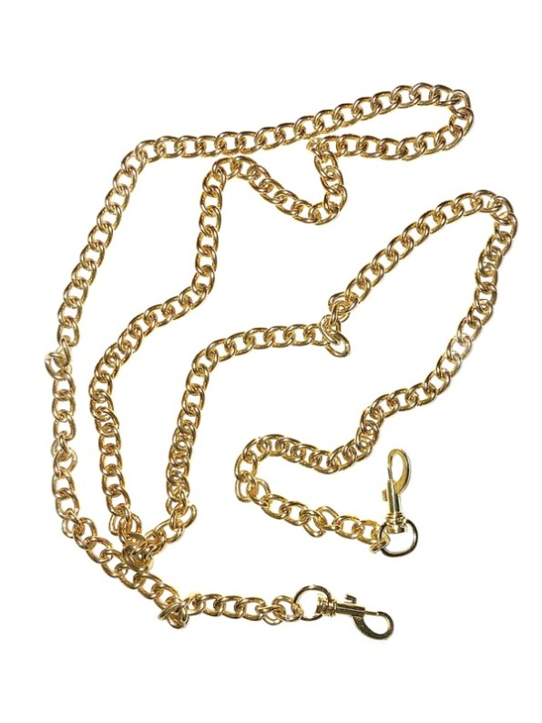 Removable Pouch Chain Gold