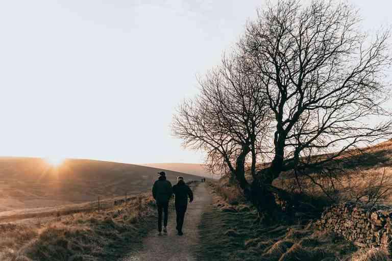 Wandelen Boom Natuur Lopen Bewegen Gezondheid Fitness Ontspanning Rust Stress Mindset