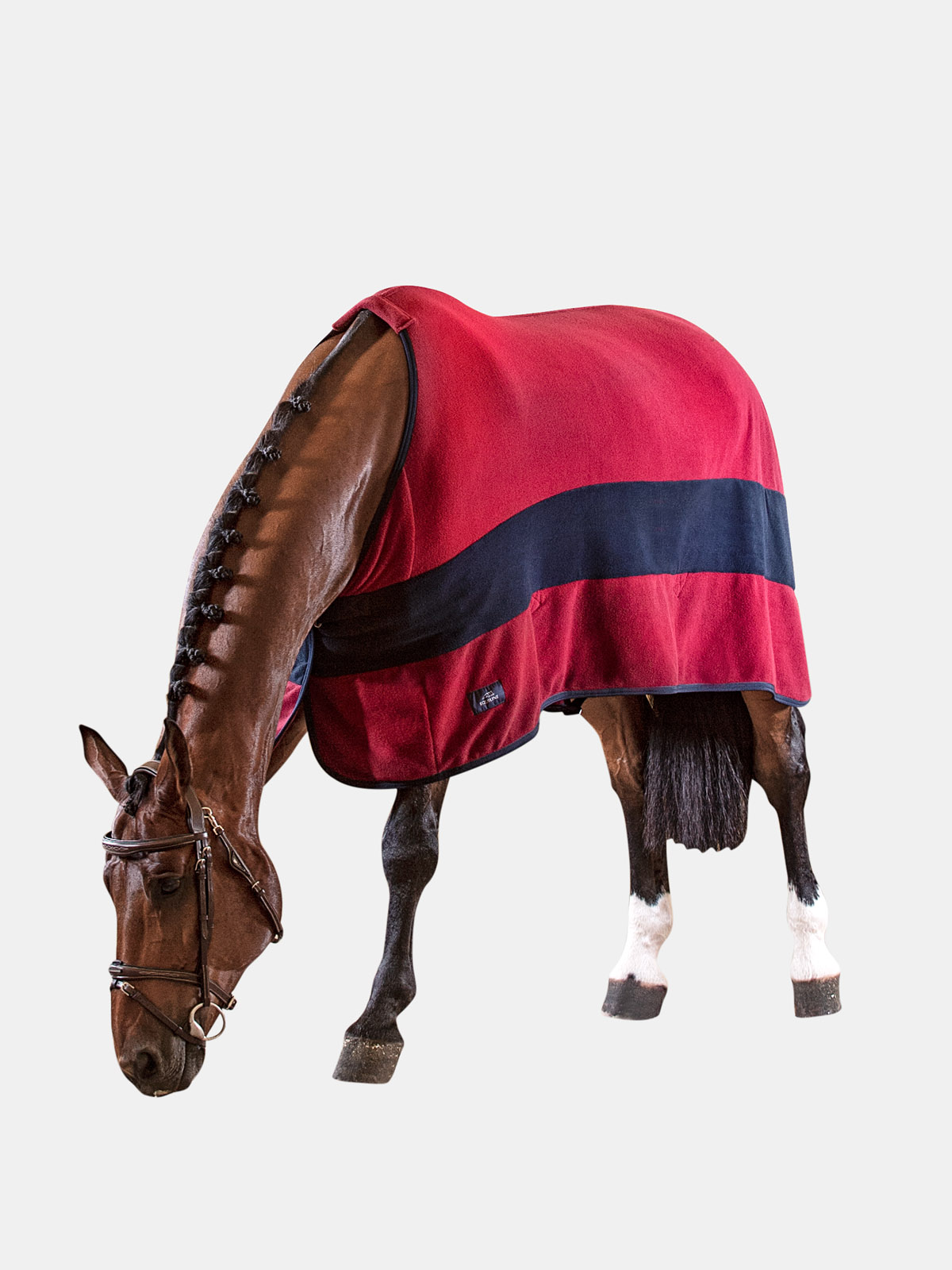 Equiline Steve horse fleece cooler with stripe