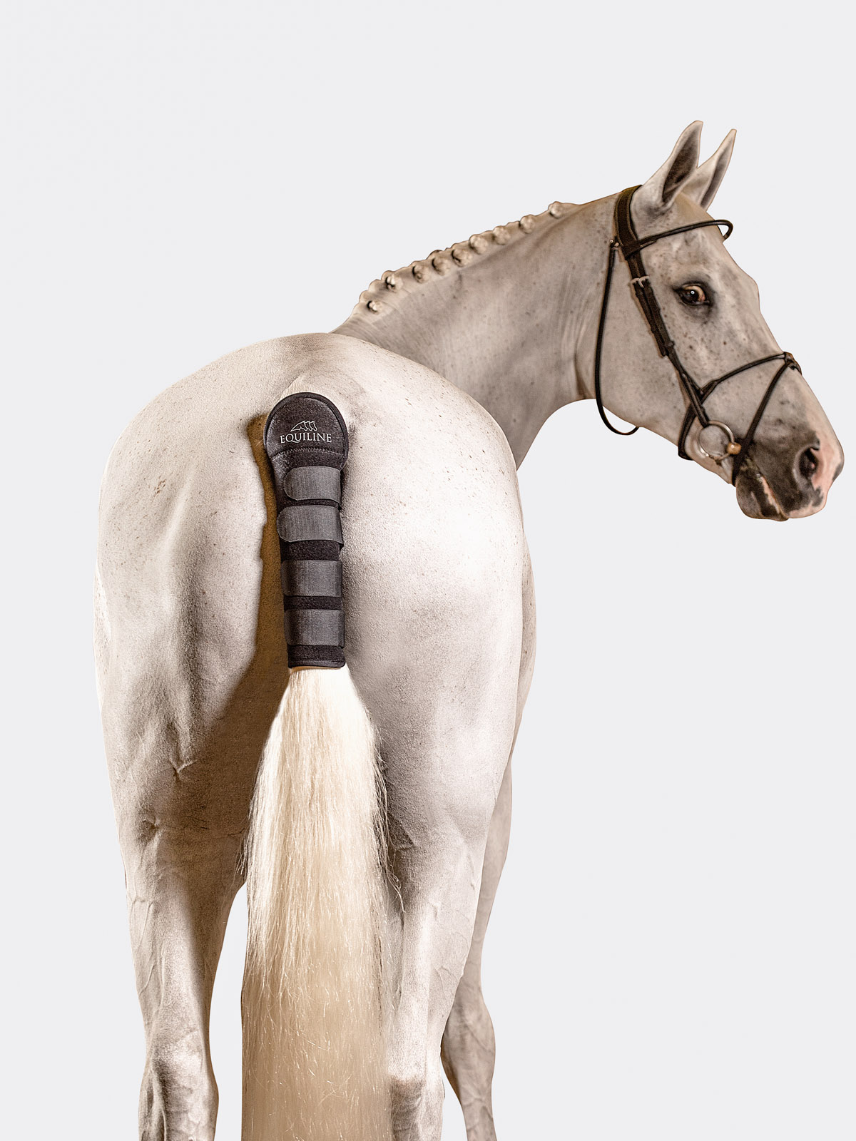 Equiline Noll tail wrap