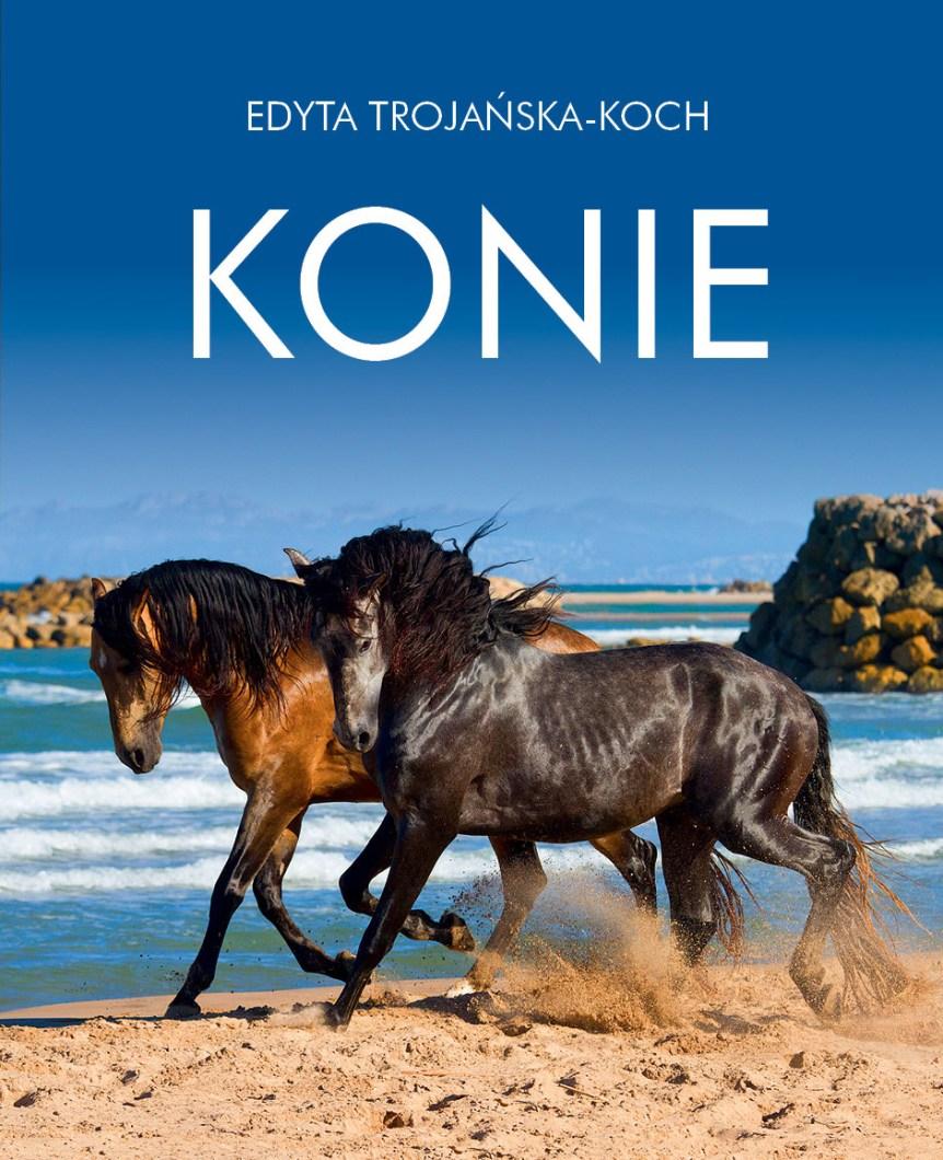 Okładka albumu konie
