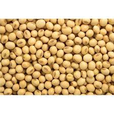 Soy In Horse Feed - The Silent Antinutrient