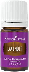 Lavender – Calming & Skin Irritations