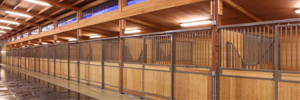 Stall Horse Foaling Size