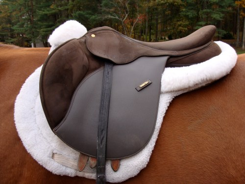 This is a jumping saddle with a pretty forward flap.