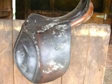 Moldy Saddle