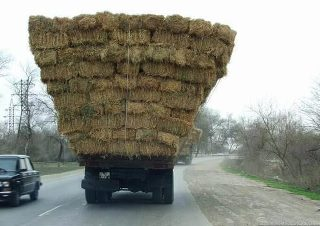 Big hay field, small truck