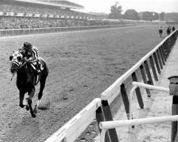 Secretariat winning the Belmont by 31 lengths