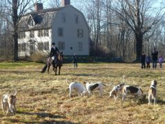 The hounds with the Manse behind them