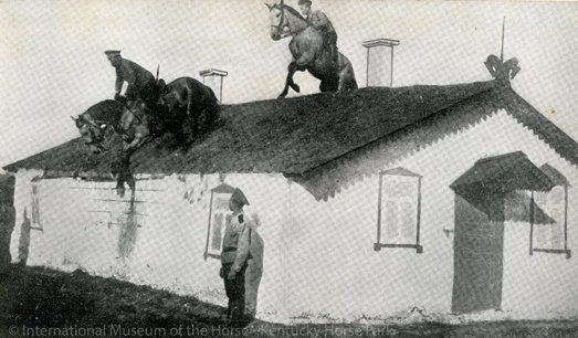 Horsemanship for Beginners