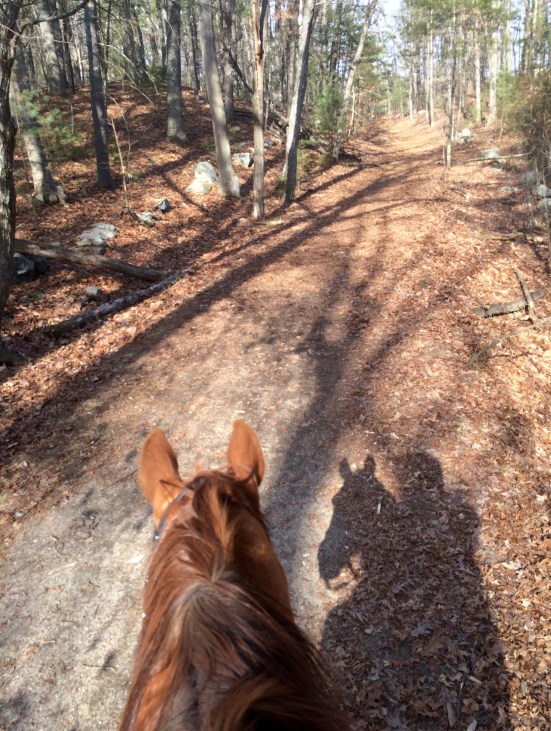 Freedom was quite calm when we set out on our hack. It was a beautiful day -- warm, and still.