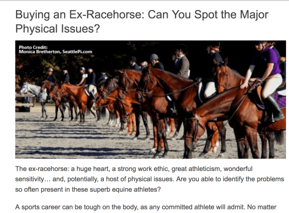 Buying an Ex-racehorse