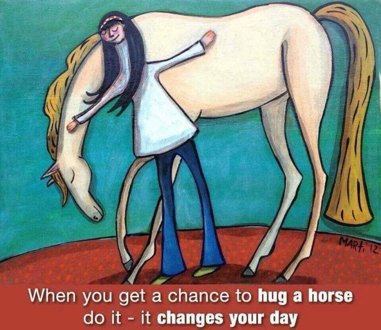 Hug a Horse