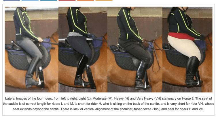 Rider Weight Study