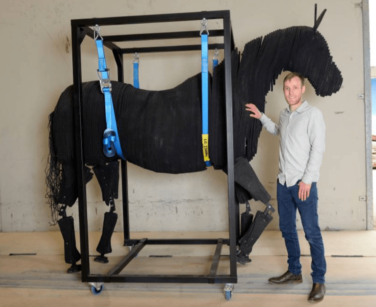 Equine Crash Test Dummy