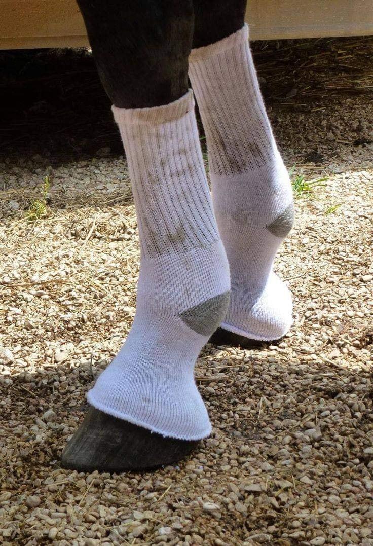 Anti-bug socks