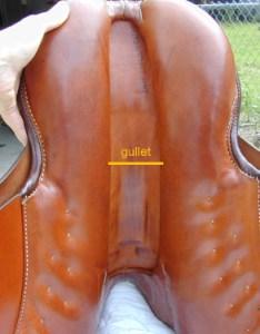 Evaluating saddle fit gullet width also  equine ink rh equineink