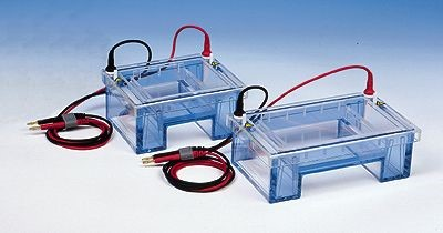 Sistema de Electroforesis Horizontal Image
