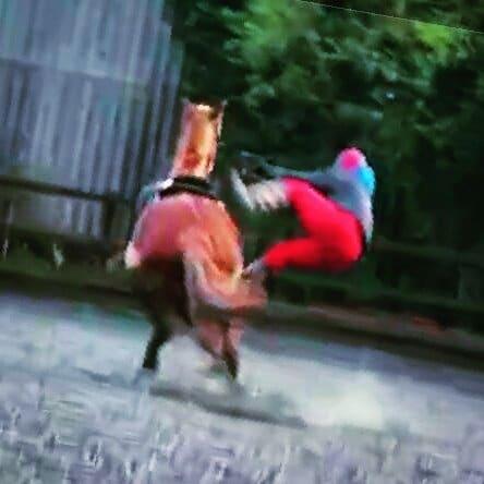 falling off scottie