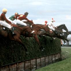 1973 racing post