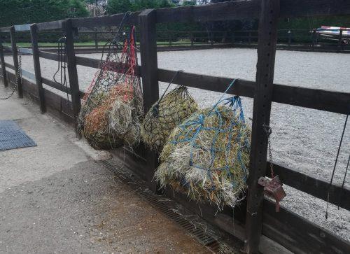 soaking vs steaming hay