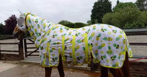 Ponyo fly rug with happy pineapple pattern, allergies in horses