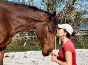 Apprendre à donner de l'amour aux chevaux