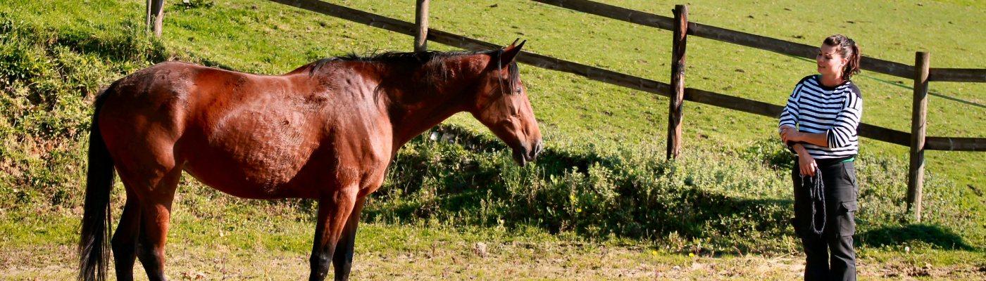 soyez complice avec votre cheval
