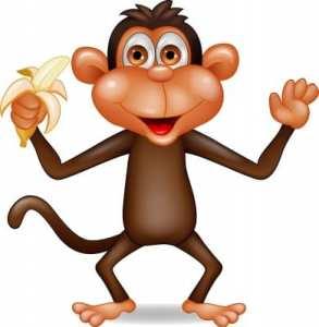 Monkey_Banana_R123F